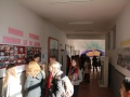 proiect-erasmus-seminaru-dorohoi-5